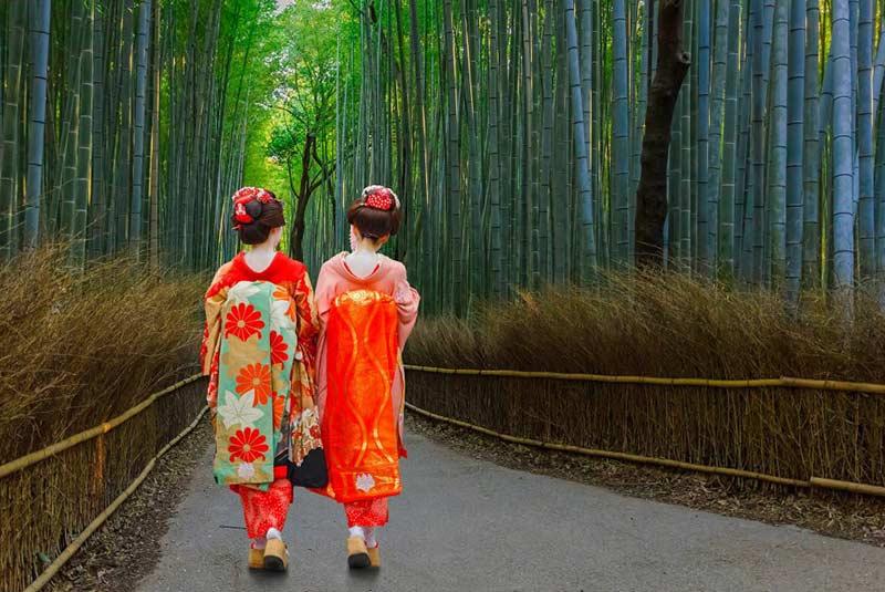 جنگل بامبو کیوتو