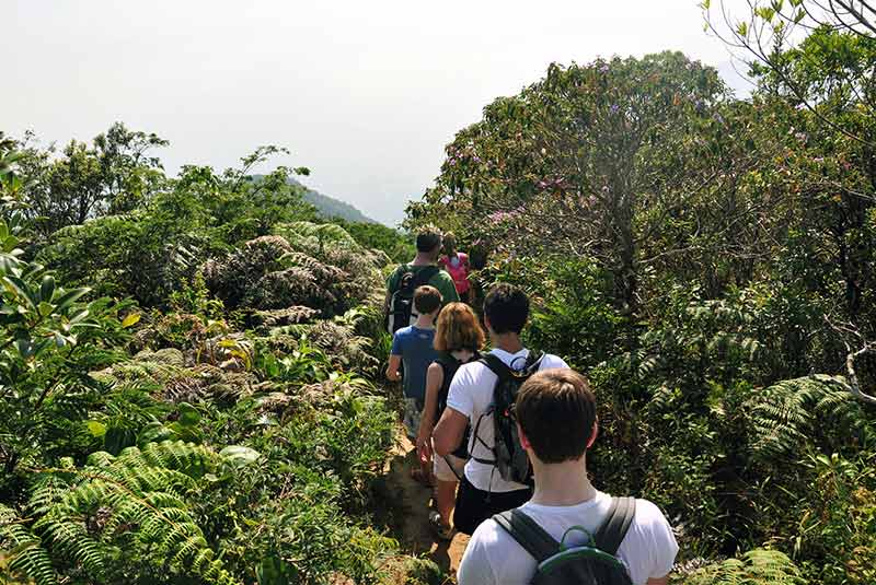پیاده روی در ریودوژانیرو