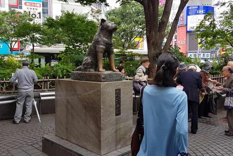محله شیبویا توکیو