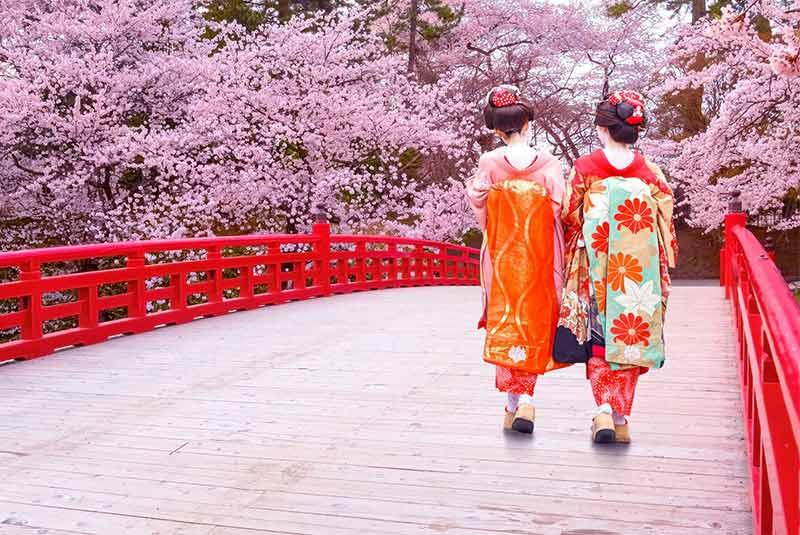 فستیوال هانامی ژاپن