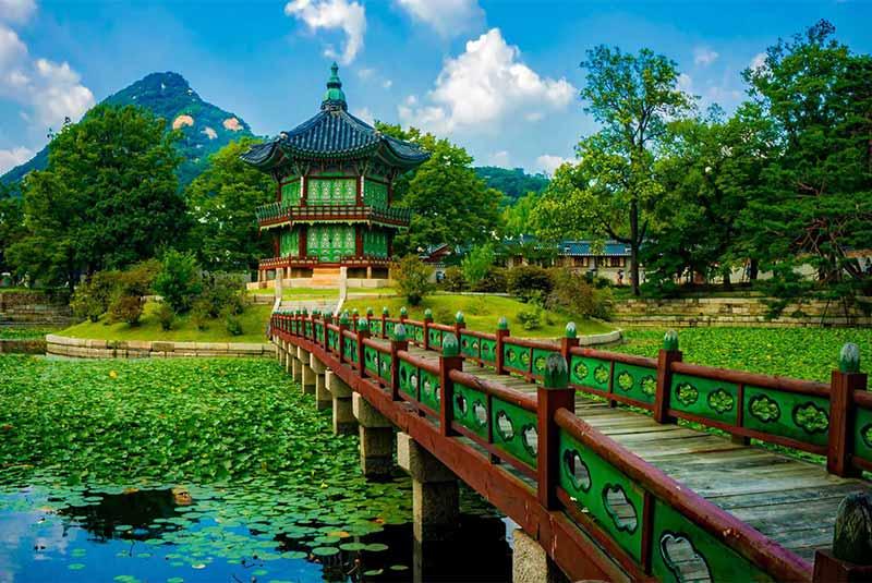 تابستان کره جنوبی