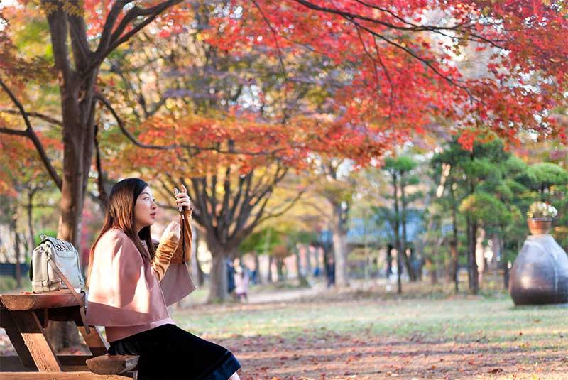 پاییز کره جنوبی