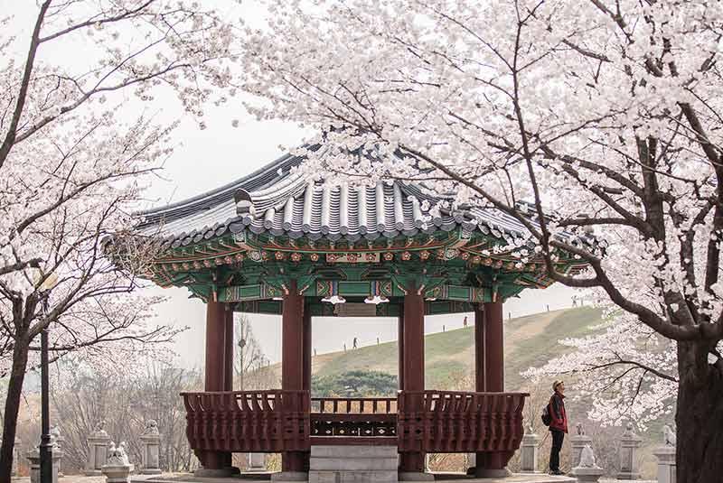 مارس کره جنوبی