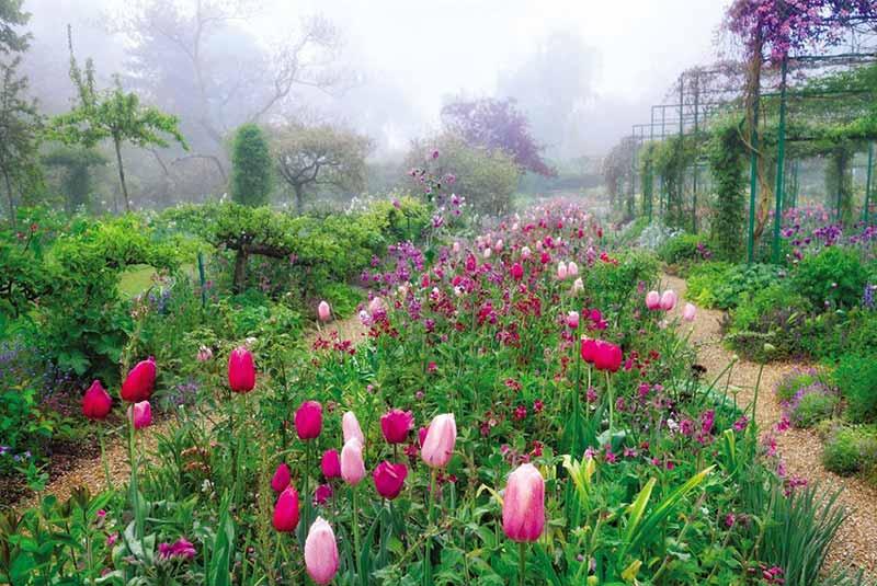 باغ گل ژیورنی فرانسه