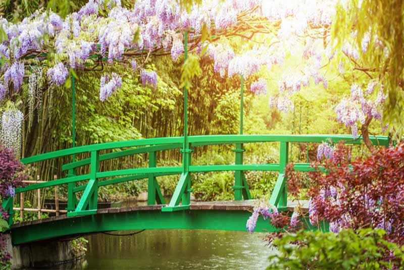 باغ مونه در ژیورنی فرانسه