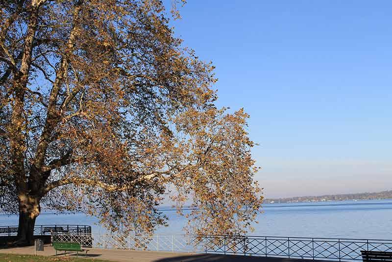 پارک مروارید دریاچه ژنو