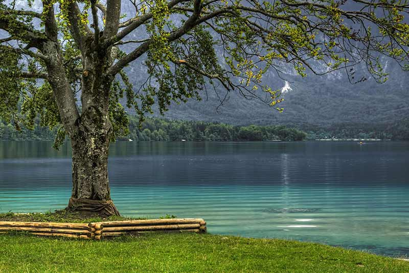 دریاچه بوهینی - اسلوونی