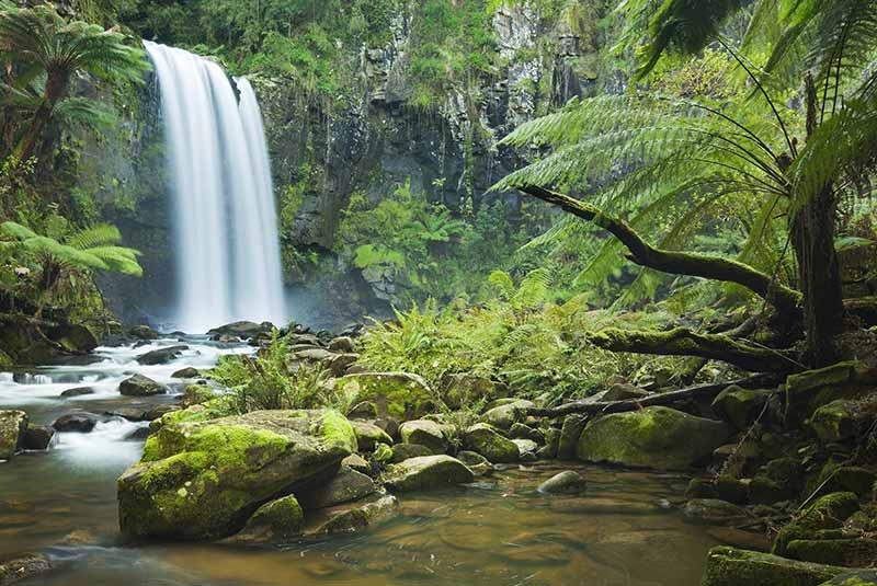 پارک ملی دینتری - استرالیا