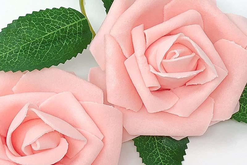 رز - زیباترین گل دنیا