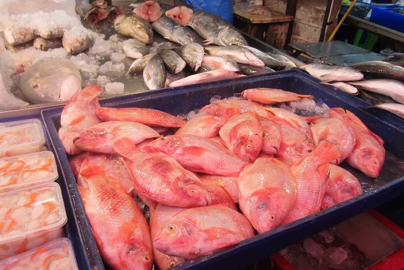 بازار ماهی ناکلوا - پاتایا