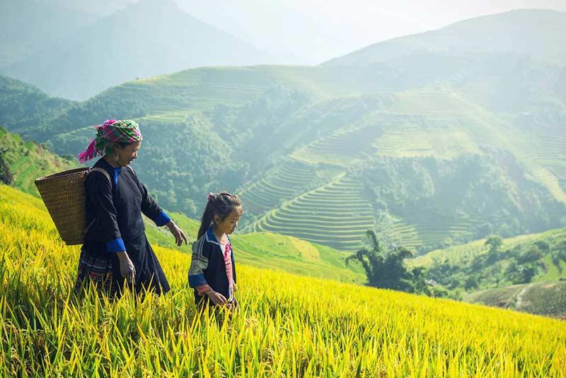 تایلند شمالی و تایلند جنوبی