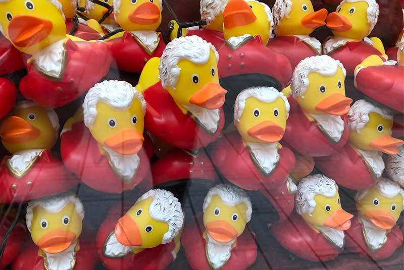 اردک های موتزارت - سوغات سالزبورگ