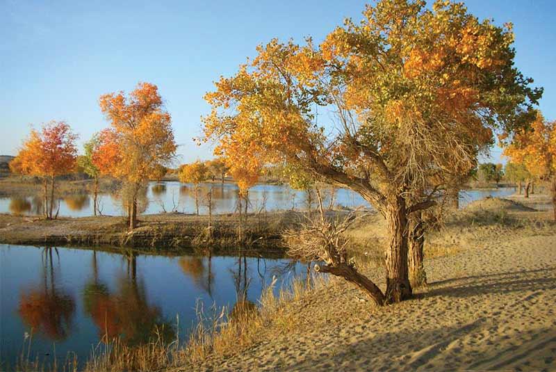 رودخانه تاریم - چین