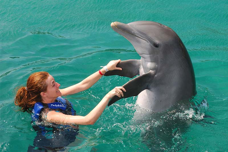 شنا با دلفین ها