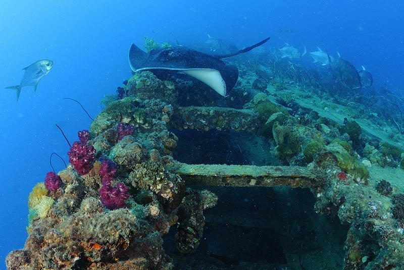 خرابه های کشتی یونگالا