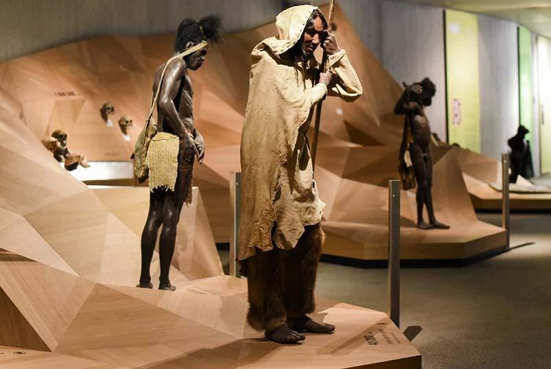 موزه نئاندرتال - دوسلدورف