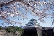 قلعه اوزاکا