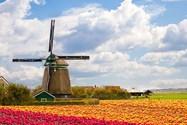 آسیاب های بادی هلند
