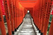 معبد - توکیو