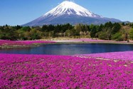 کوه فوجی هاکونه